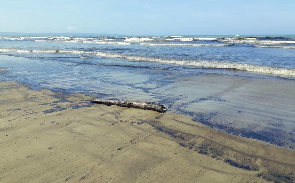 La flora y fauna del parque nacional sería afectada por el crudo, denunciaron ambientalistas de la zona
