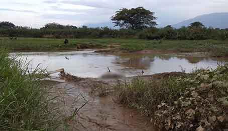 Cadáver-encontrado-en-Cúcuta-es-de-un-venezolano