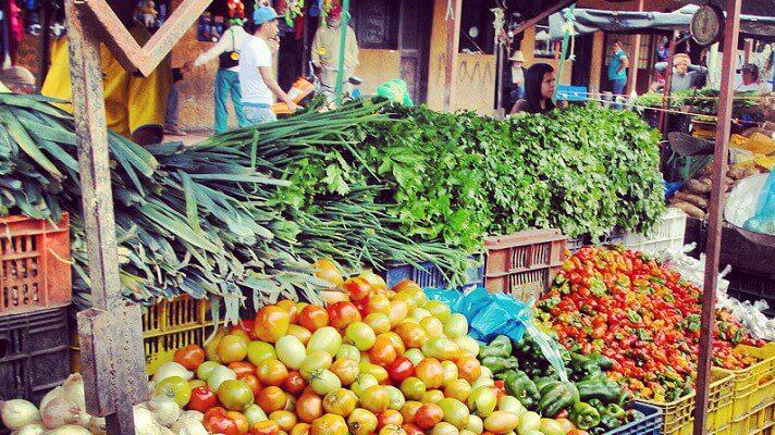 La crisis económica del país avanza en todos los sectores y el campo no escapa de ello. Por esta razón, el cultivo de hortalizas que se consumen en casi 20 estados del país, está en peligro.