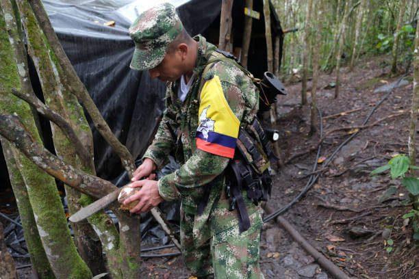 Mueren al menos cinco disidentes en operativo militar en el sur de Colombia