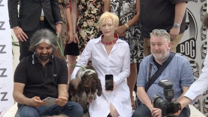 palm-dog-de-cannes-2021-para-los-tres-perros-spaniel-de-la-actriz-tilda-swinton