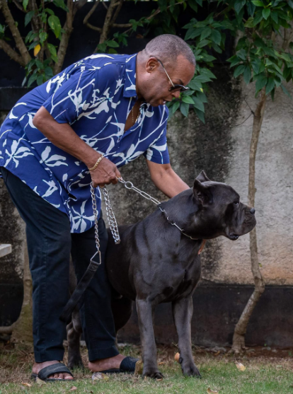 Adalberto Álvarez con su mascota. Foto Facebook
