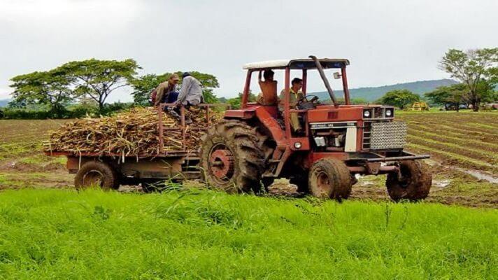 La escasez de combustible sigue siendo un gran obstáculo para los productores agrícolas del país. Por ello, muchos no pudieron cumplir sus metas propuestas para el ciclo invierno-2020, por la carencia del diésel.