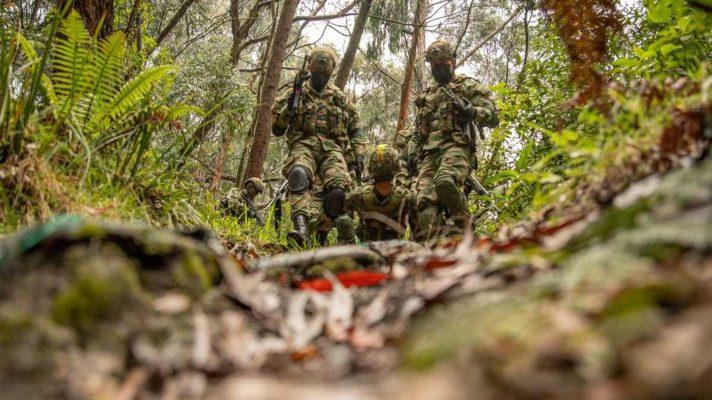 tras-activacion-de-campo-minado-de-las-farc-mueren-tres-soldados-en-zona-rural-de-valle-del-cauca