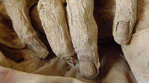 momificado